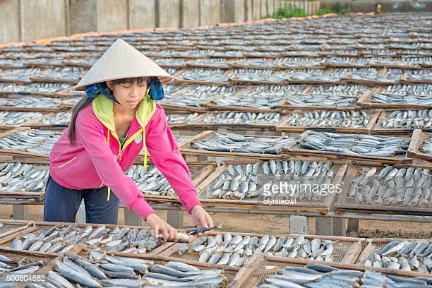 Girl Sorting Prepared Sardines for Sun-Drying