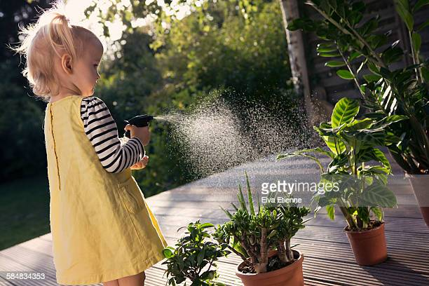 Girl (3-4) spraying water onto potted plants