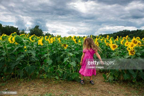 Girl standing at sunflower farm against cloudy sky
