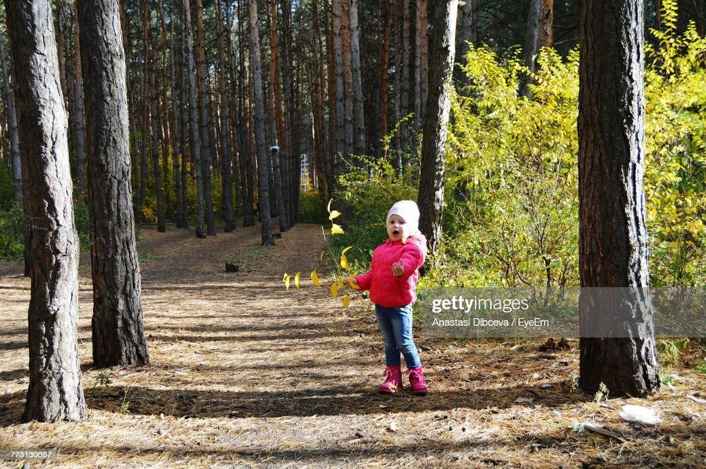 Girl Standing By Tree In Forest : Photo