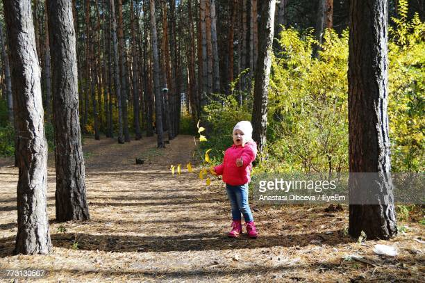 girl standing by tree in forest - anastasi foto e immagini stock