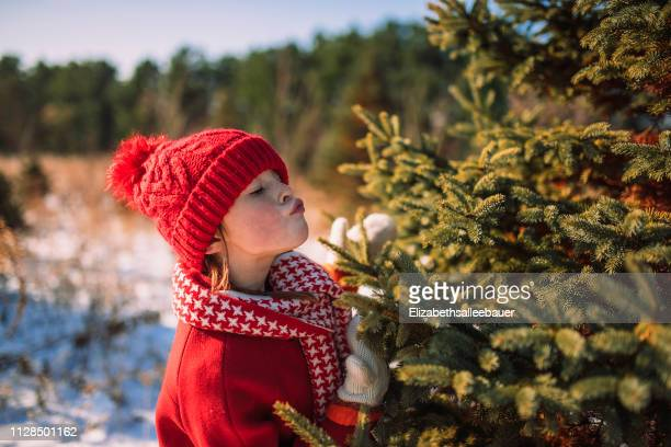 girl standing in a field on a christmas tree farm kissing a tree, united states - nur kinder stock-fotos und bilder