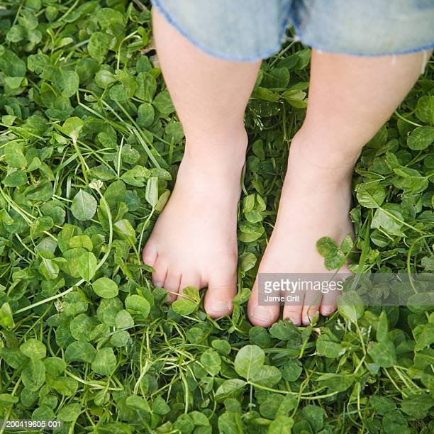girl (3-5) standing in clover, low section, elevated view - 4 leaf clover stock-fotos und bilder
