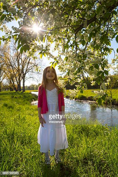Girl standing on a meadow looking up to a tree