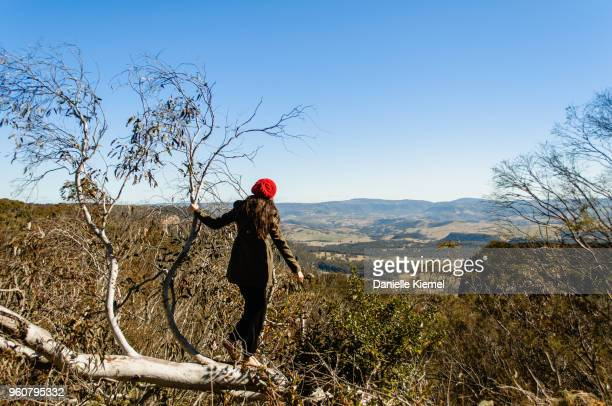 girl standing on a tree overlooking valley below - blue mountains national park stock pictures, royalty-free photos & images