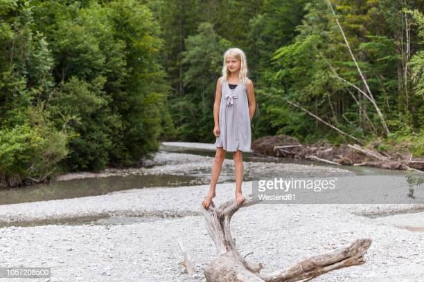 girl standing on dead wood at the riverside - dead girl imagens e fotografias de stock