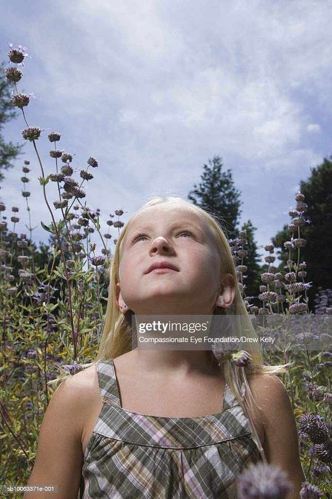Girl (8-9 years) standing on flower field, looking up : Stock Photo