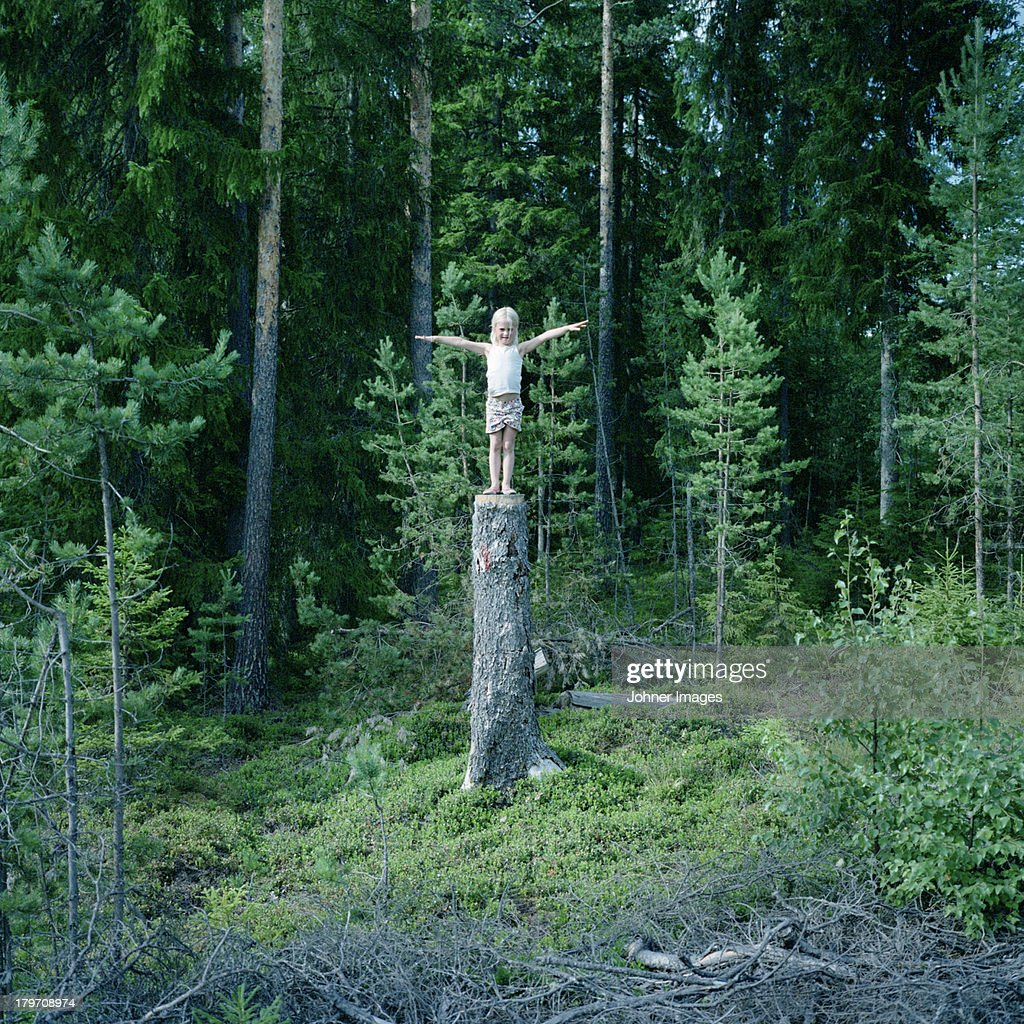 Girl standing on stump in forest : Stock Photo