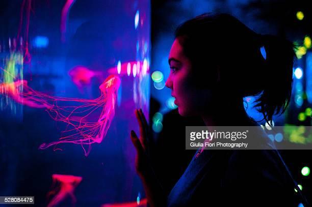 Girl staring at the jellyfish in an aquarium
