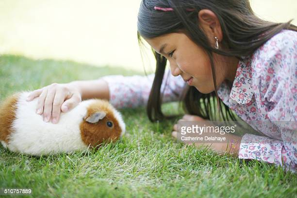 a girl stroking a hamster - guinea pig stock pictures, royalty-free photos & images