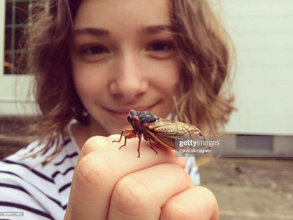 Girl Studying Cicada : Stock Photo