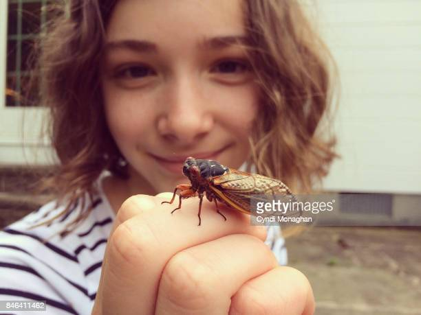 girl studying cicada - curiosity stock pictures, royalty-free photos & images