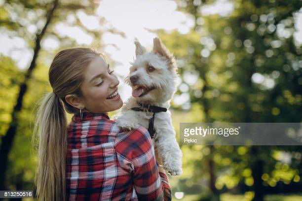 girl take care of puppy - maltese dog stock pictures, royalty-free photos & images