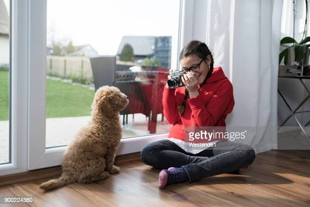 girl taking a picture of her dog in living room - camera girls stock photos and pictures
