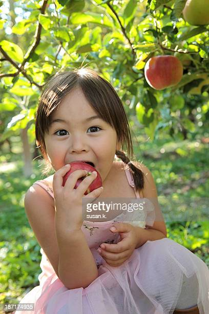 girl tasting freshly picked apple at the orchard - kid girl eating apple stock photos and pictures