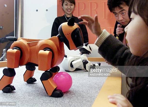 A girl touches a new color Sony's robot pet 'AIBO ERS210' at the company's AIBO color collection campaign in Tokyo 04 March 2001 Sony started to sell...