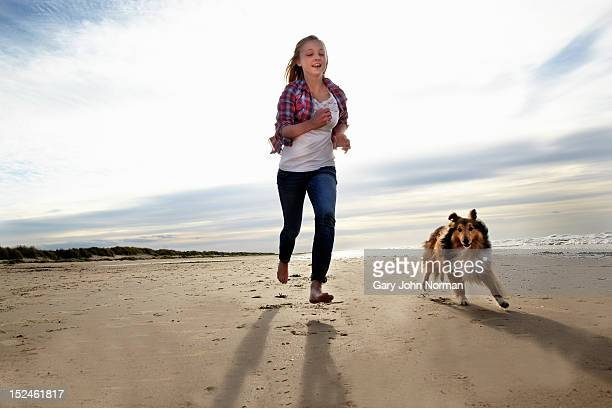 girl ( 14-16) training dog on beach - um animal - fotografias e filmes do acervo