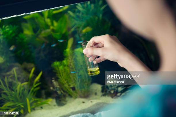 Girl using a chemical test kit to measure the quality of water in a home aquarium