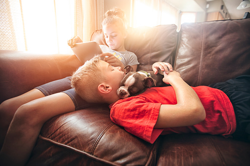 Girl using digital tablet on sofa whilst brother and boston terrier pup asleep - gettyimageskorea