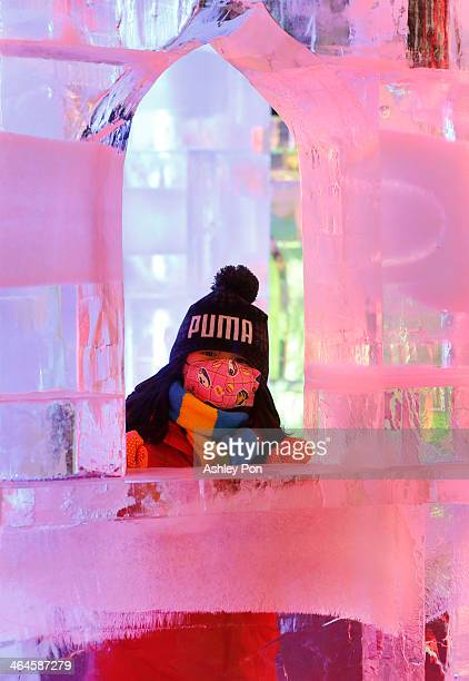"""Girl visiting """"Fantasy Ice World"""" on January 23, 2014 in Taipei, Taiwan. Ice sculptors from the famous Harbin Ice Festival create the 7 wonders of..."""