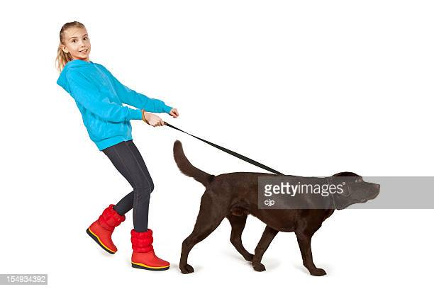 A girl walking a big brown dog on a leash