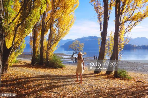 Girl walking among autumn leaves and yellow poplar trees on the shore of Lake Wanaka