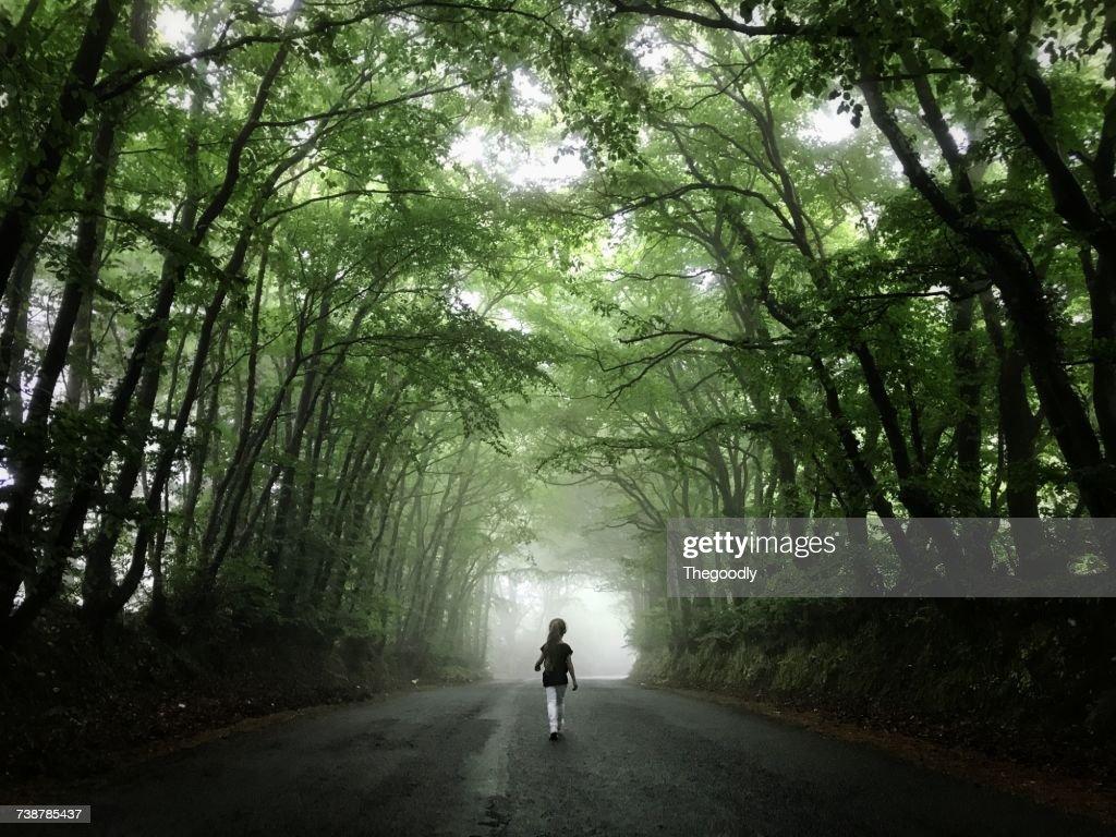 Girl walking down a foggy treelined road, Sidmouth Forest, Devon, England, UK : Stock Photo