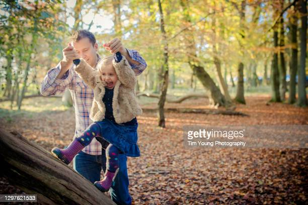 girl walking on fallen tree - tree stock pictures, royalty-free photos & images