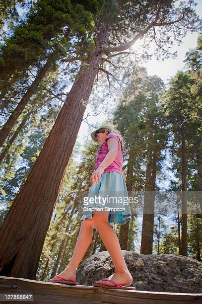 girl walking on fence beneath giant trees