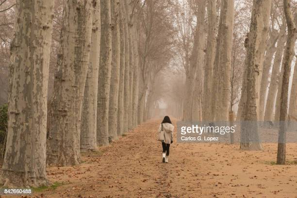 Girl walking on pathway among brown trees in the mist