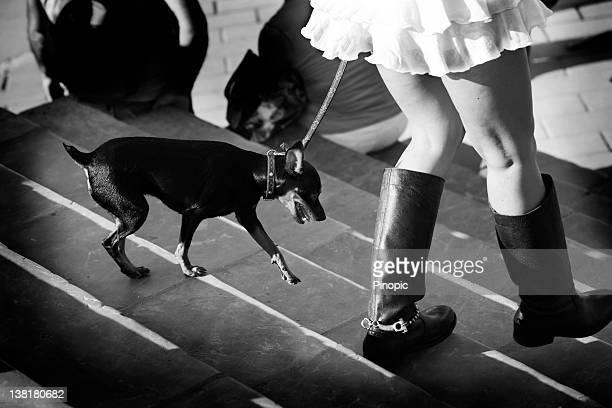 Chica pasear el perro a