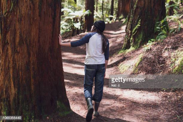 girl walking through a redwood forest - rotorua stock pictures, royalty-free photos & images