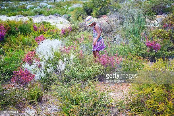Girl walking through meadow of wildflowers, Jurien Bay, Western Australia, Australia