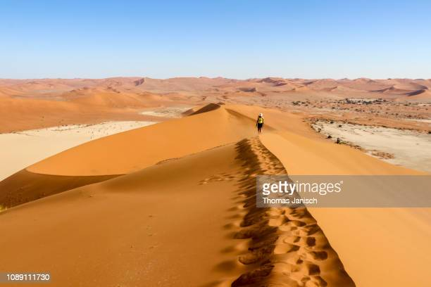 girl walking up the ridge of a sand dune, sossusvlei region, namib desert, namib-naukluft national park, namibia - セスリエム ストックフォトと画像