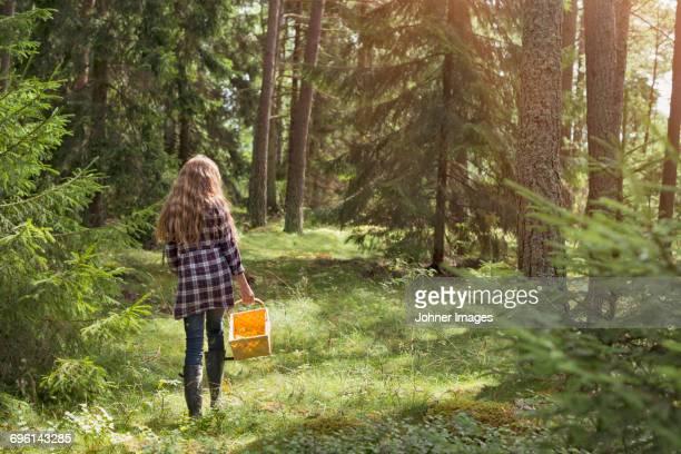 girl walking with basket in forest - knackiger po stock-fotos und bilder