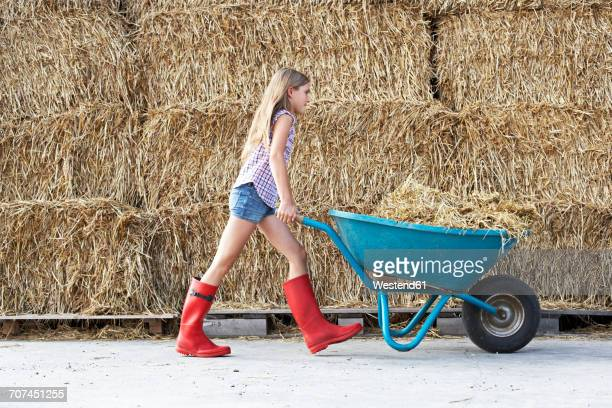 girl walking with wheelbarrow on horse farm - wheelbarrow stock photos and pictures