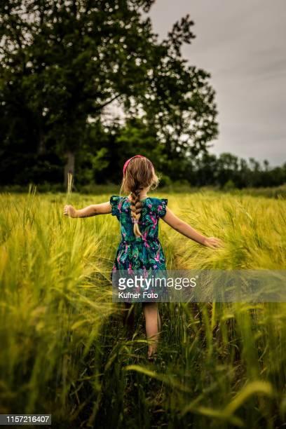 Girl walks through a cornfield