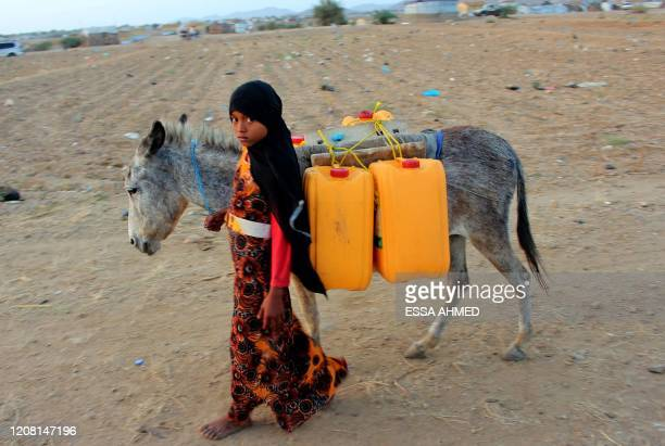 A girl walks with a donkey carrying jerry cans filled with water from a cistern at a makeshift camp for displaced Yemenis in severe shortage of water...