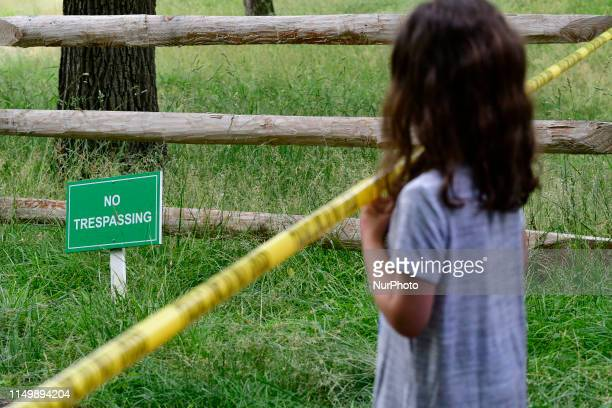A girl watches from behind police tape as a male black bear was captured by game warden with the PA State Game Commissions after a fiveday Long chase...