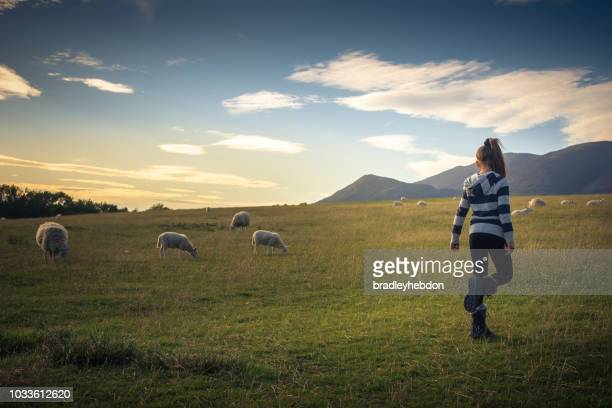 Girl watching sheep graze on the lush hills of Keswick, England