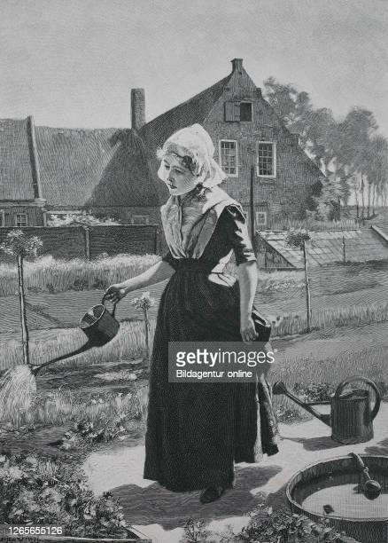 Girl watering in the home garden, original print from the year 1899, Mädchen, das im Hausgarten, gießt, Reproduktion einer Originalvorlage aus dem...