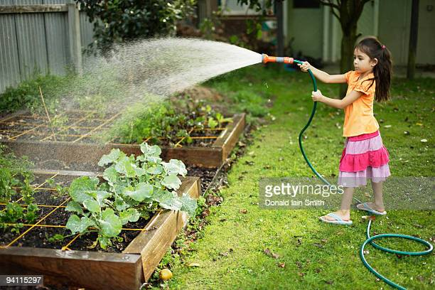 Girl waters vegetable patch
