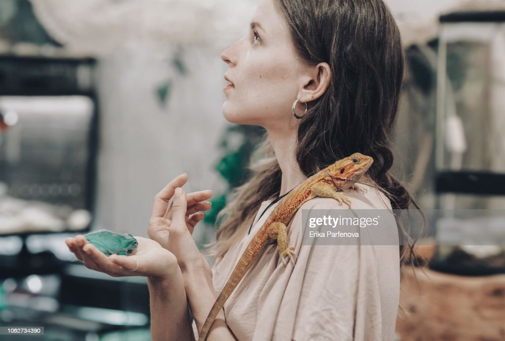 Girl With A Bearded Dragon Stock Photo | Getty Images
