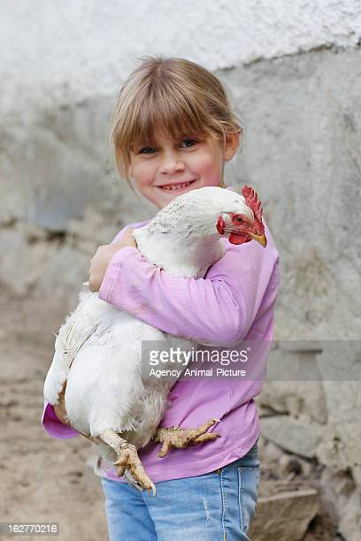 A girl with a chicken on a meadow on July 30 2012 in Neukirchen vorm Wald Germany
