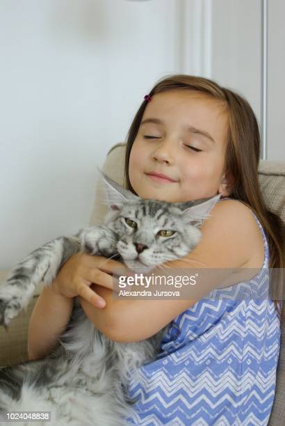 a girl with a maine coon cat - maine coon cat stock pictures, royalty-free photos & images