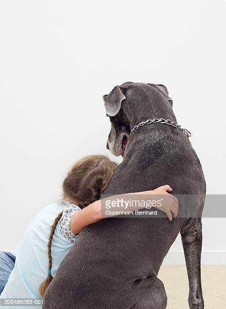 Girl (9-11) with arm around Great Dane, rear view