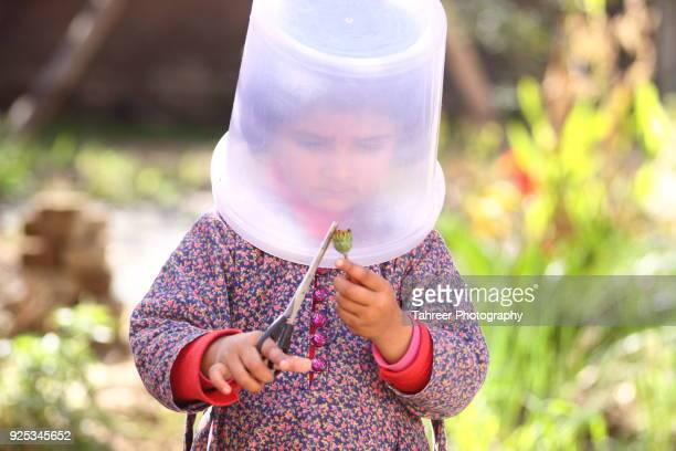 A girl with bucket of water on head, cutting flower