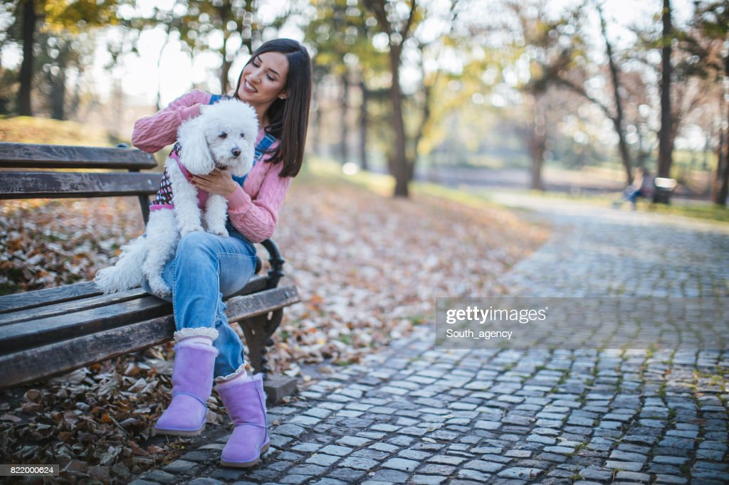 Girl with cute dog in park : Stock Photo