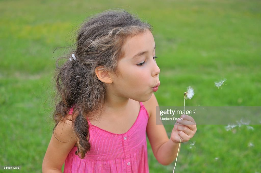Girl with Dandelion : Stock Photo