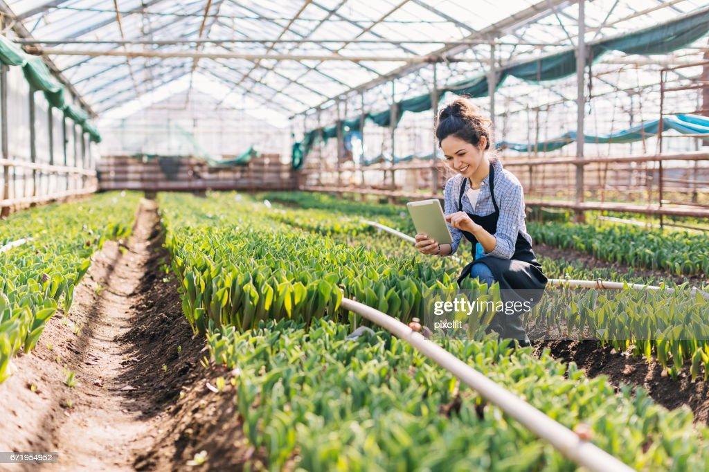 Chica con tableta digital trabajando en un invernadero : Foto de stock